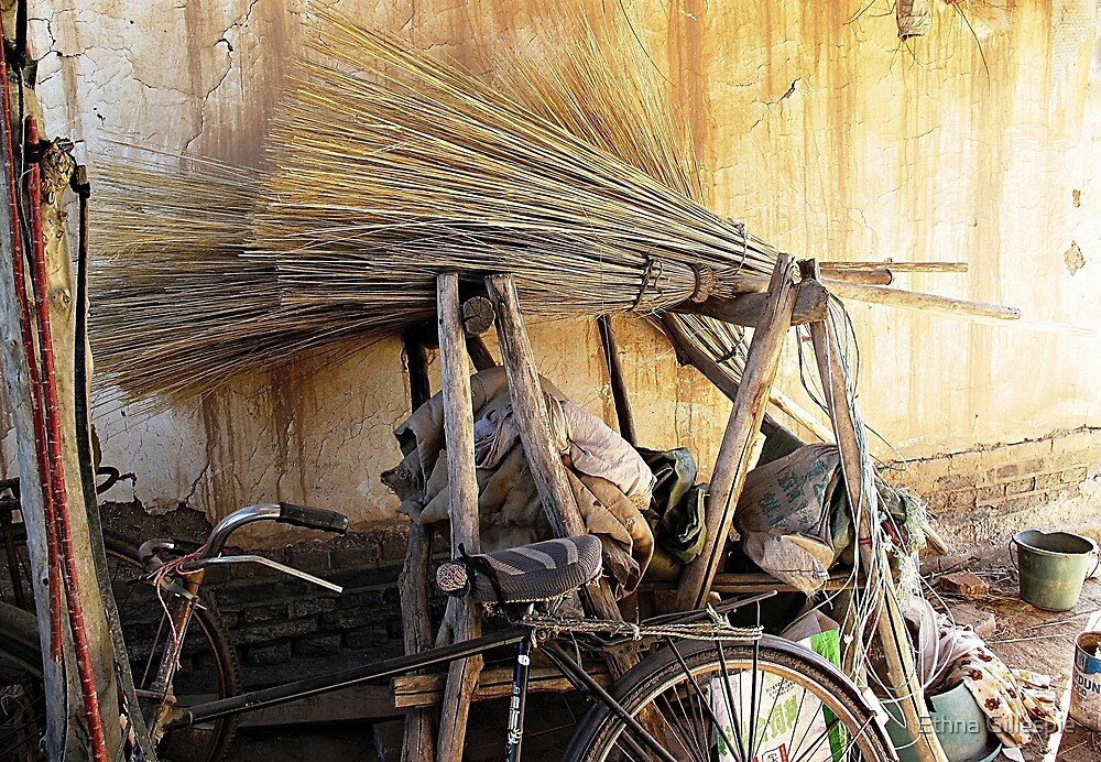 Brooms & Bicycle  by Ethna Gillespie