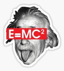 Funny Albert Einstein Famous Physics Crazy Obey Sticker