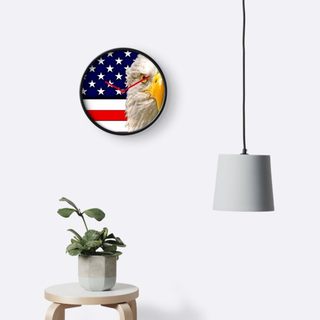 Flag and Eagle  by Dave  Knowles