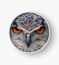 Eyes of an Indian Eagle Owl Clock