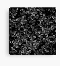 Dark Leaves Canvas Print