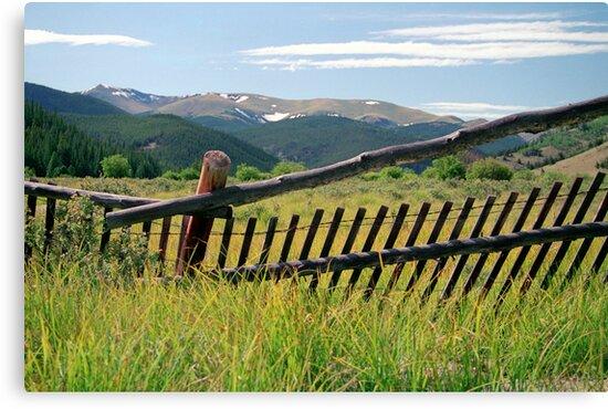 Colorado Caged by Jan Cartwright