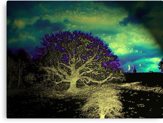 Tree  by blamo