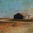 Little Shack on The Prairie by Sherryll  Johnson