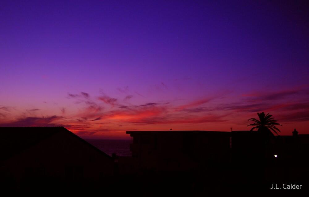 African Sunset by J.L. Calder