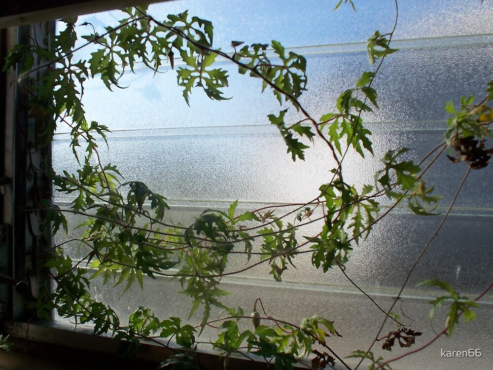 Ivy in the Window by karen66