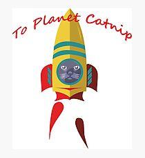 Cat - To Planet Catnip Photographic Print