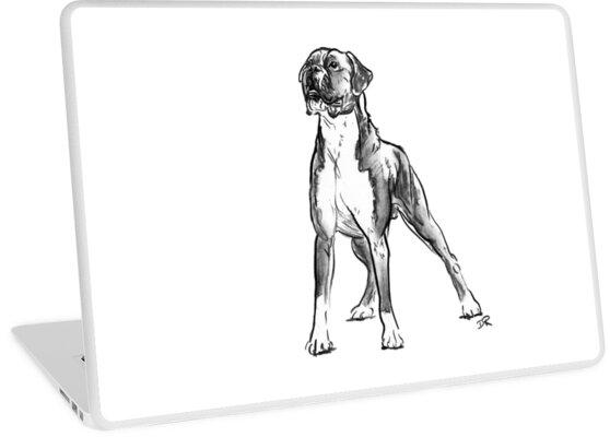 Boxer Dog Drawing Laptop Skins By Douglas Rickard Redbubble