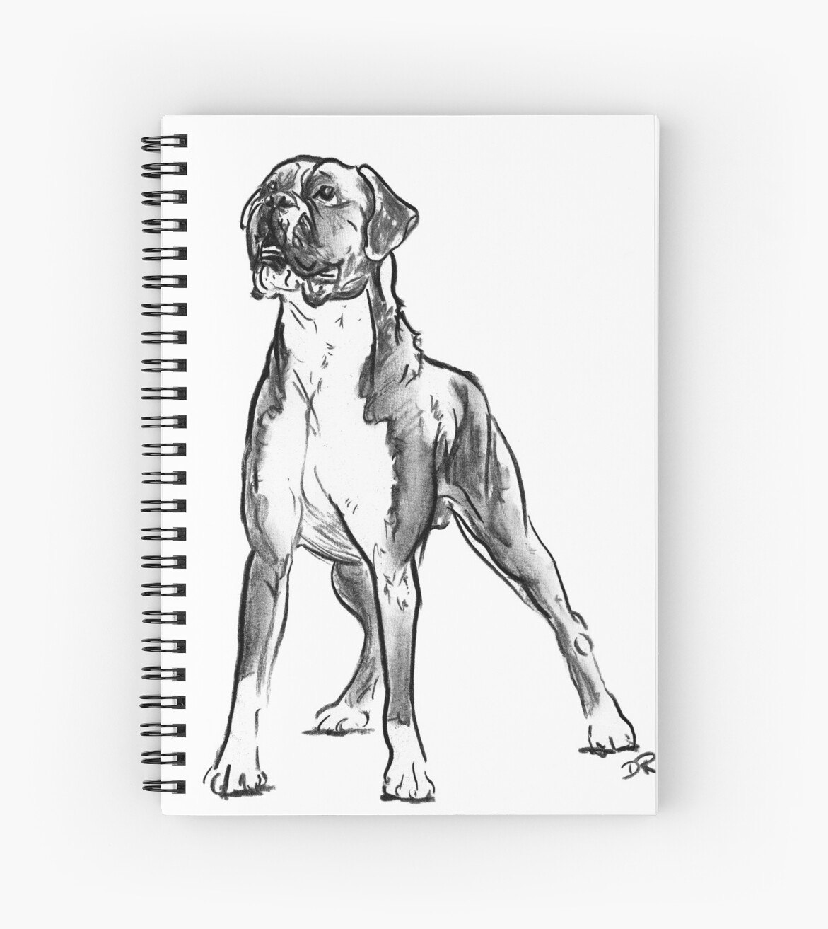 Boxer Dog Drawing Spiral Notebooks By Douglas Rickard Redbubble