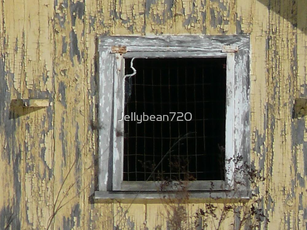 The Window by Jellybean720