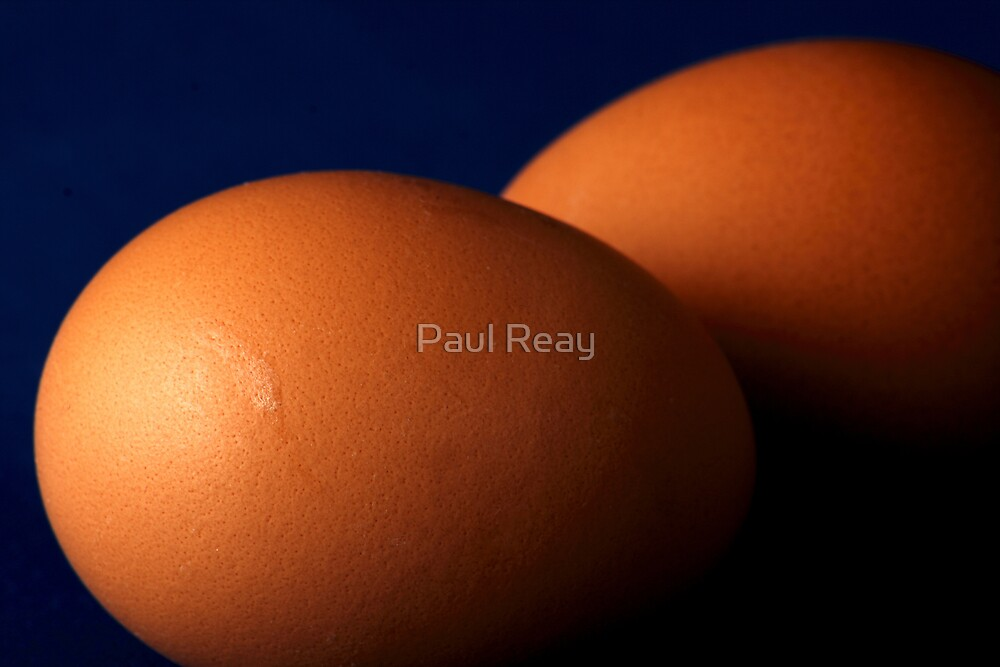 Hard Boiled by Paul Reay