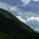 Umbrellas Over Mount Webster by Wayne King