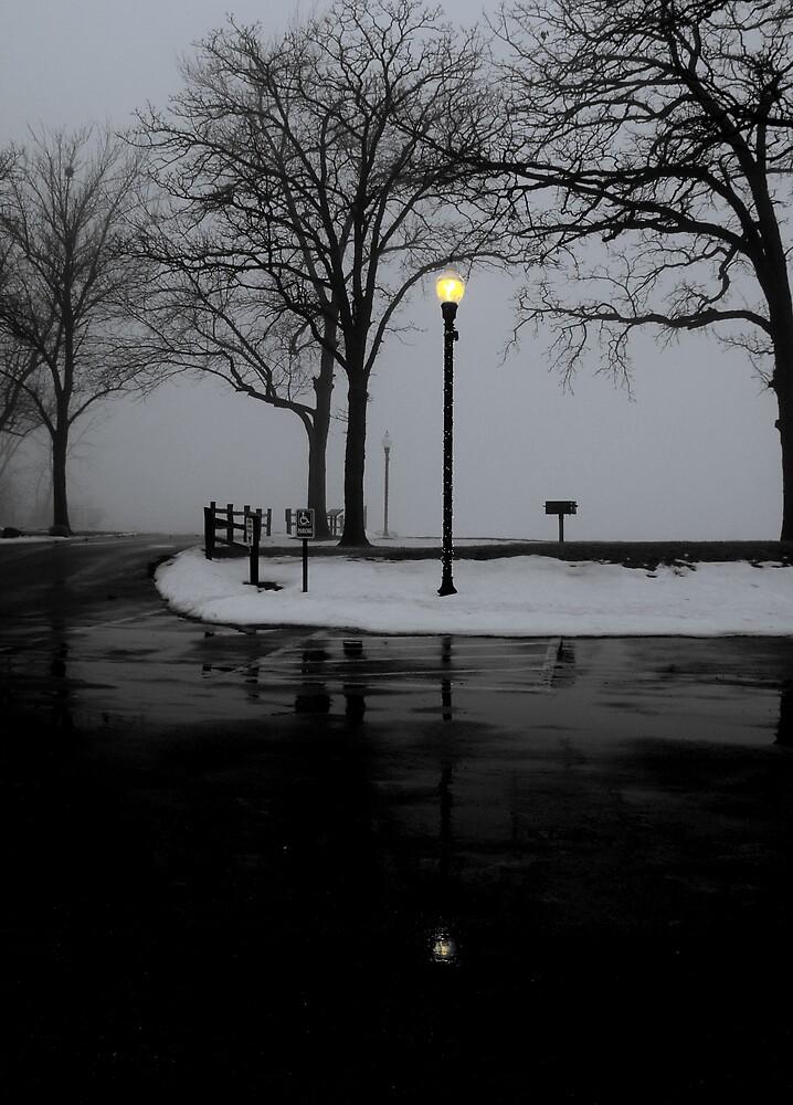 Foggy day by Daniela Reynoso Orozco