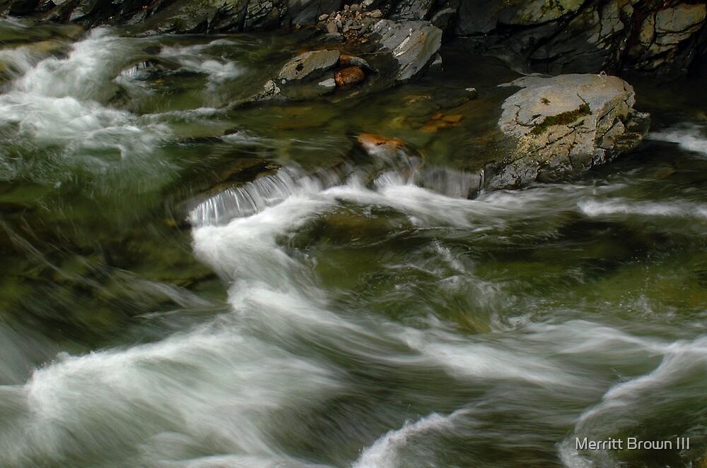 Small Falls # 42 by Merritt Brown III