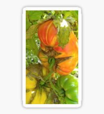 Stoplight Tomatoes Sticker