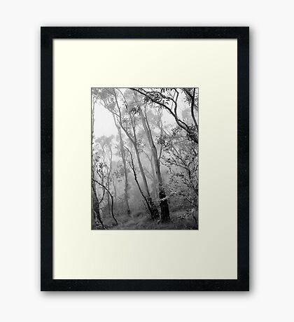 My View of Twenty Four April - New England National Park Framed Print