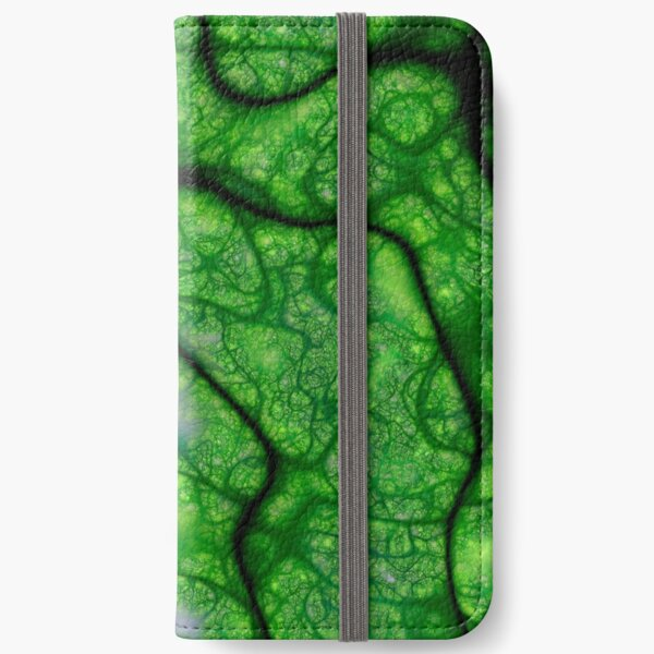 Rogues Gallery 8 iPhone Wallet