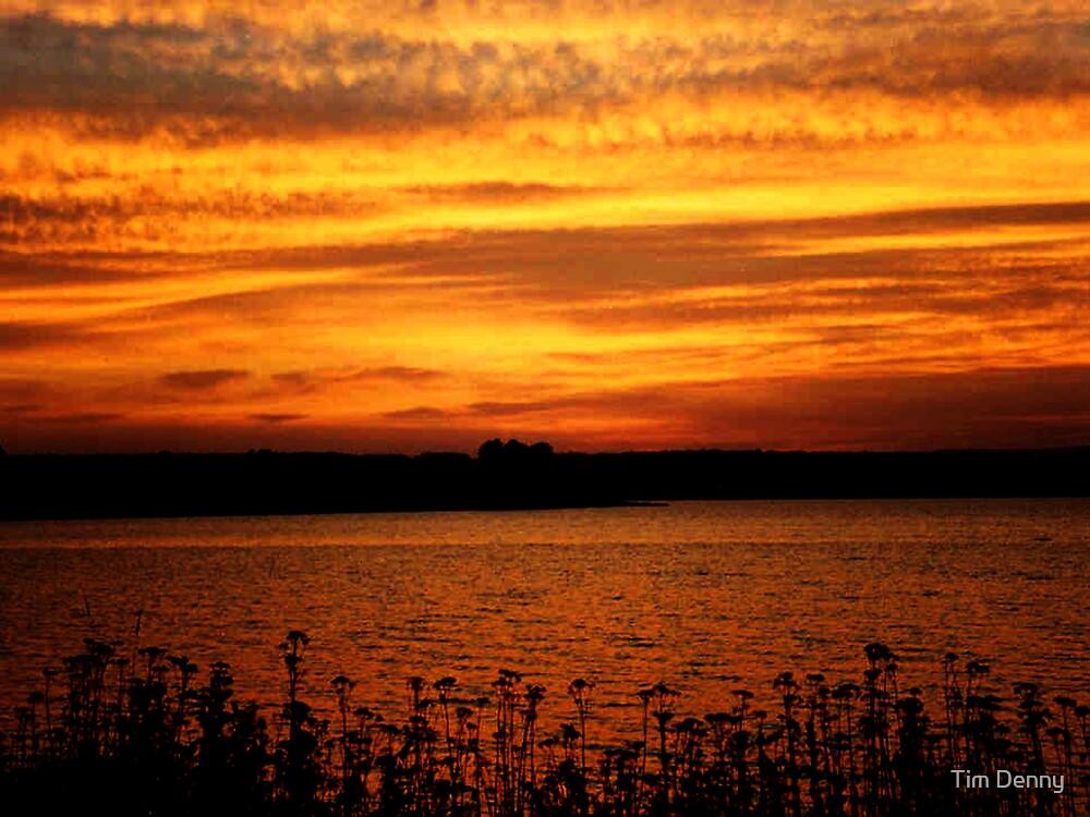 When Evening Shadows Fall by Tim Denny