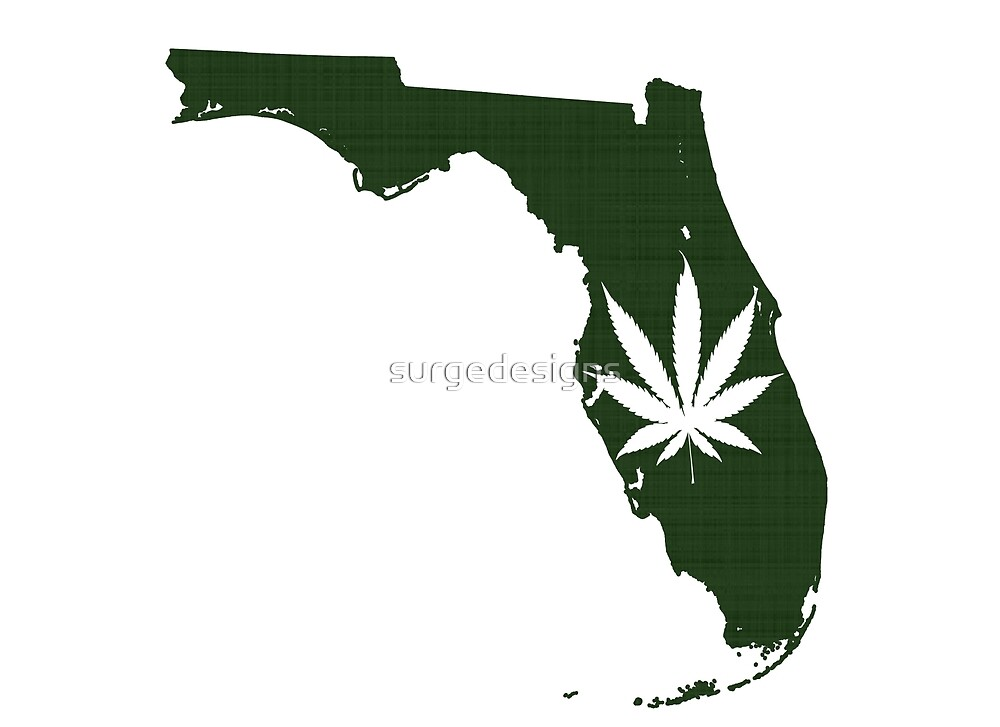 Marijuana Leaf Florida by surgedesigns