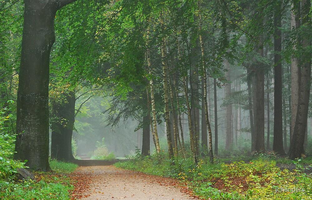 Green, green, green October by jchanders