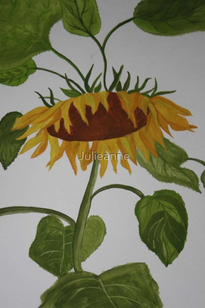 Bowing Sunflower by Julieanne