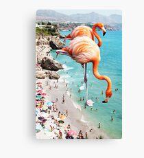 Flamingos am Strand #redbubble #decor Leinwanddruck