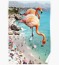 Flamants roses sur la plage #redbubble #decor Poster