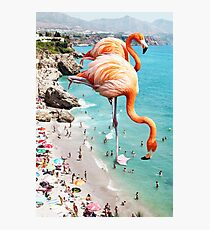 Lámina fotográfica Flamencos en la playa #redbubble #decor