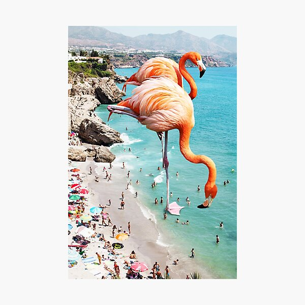 Flamingos on the Beach #redbubble #decor Photographic Print