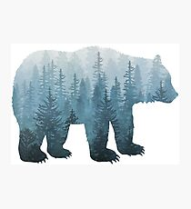 Misty Forest Bear - Turquoise Photographic Print
