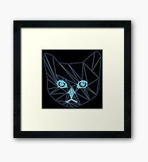 High speed gatto  Framed Print