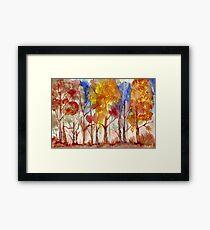 Sunset through the Bluegums Framed Print