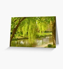 Willow Trees In Spring  Greeting Card