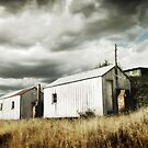 Shearers Sheds by Tony Lomas
