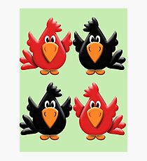 Four Little Birdies  Photographic Print