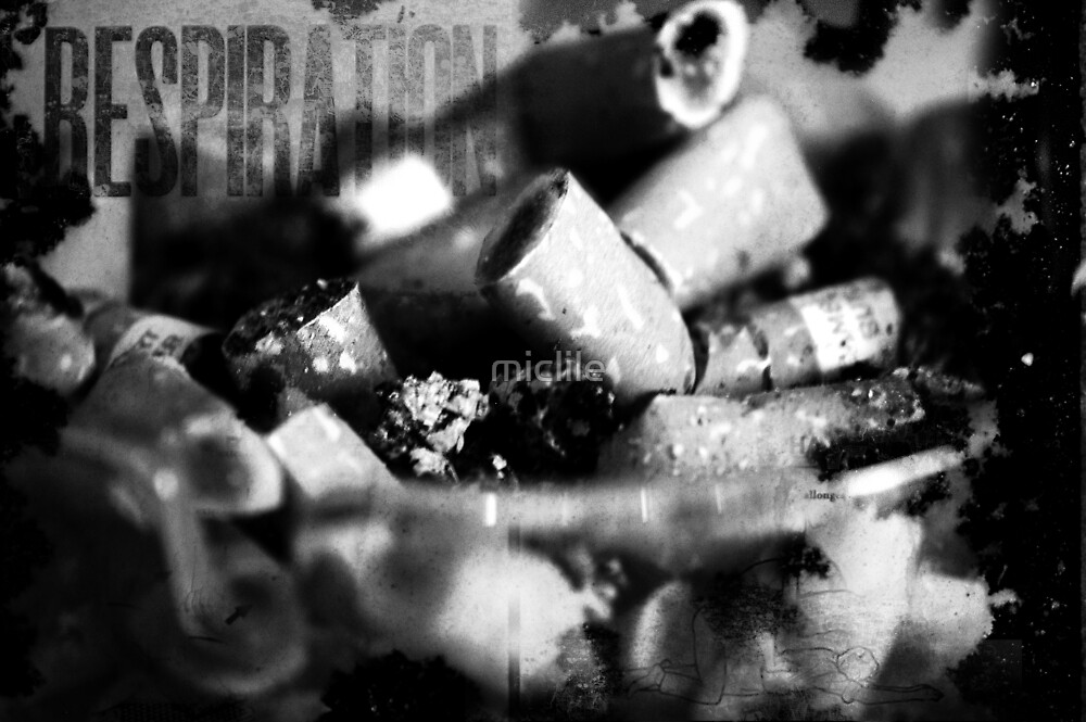 bad habit 2 by miclile