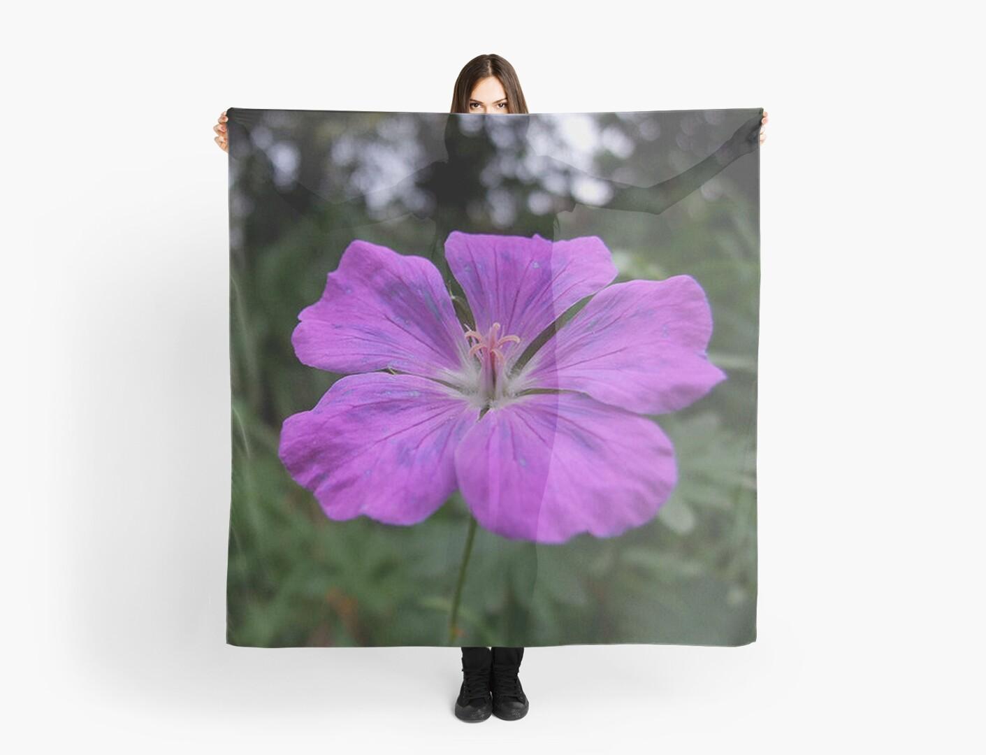 Violet Viola Flower With Garden Background by taiche