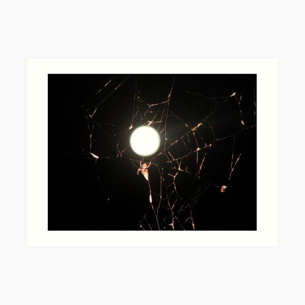 Moon Light Spider Art Print