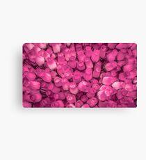 Dozens of Miniature Pink Roses Canvas Print