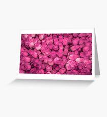 Dozens of Miniature Pink Roses Greeting Card