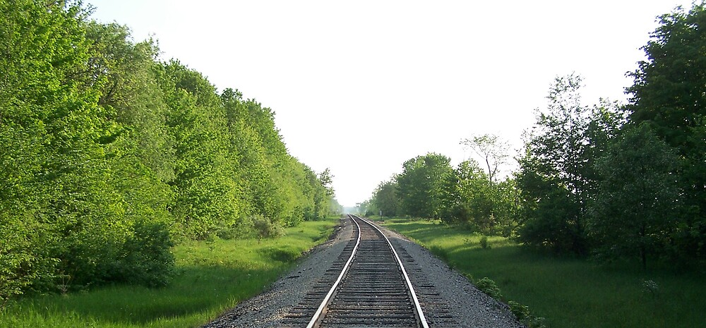 Railroad tracks by Norris01