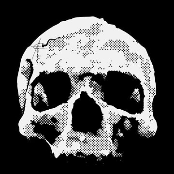 Skull 2 by Argonaut999