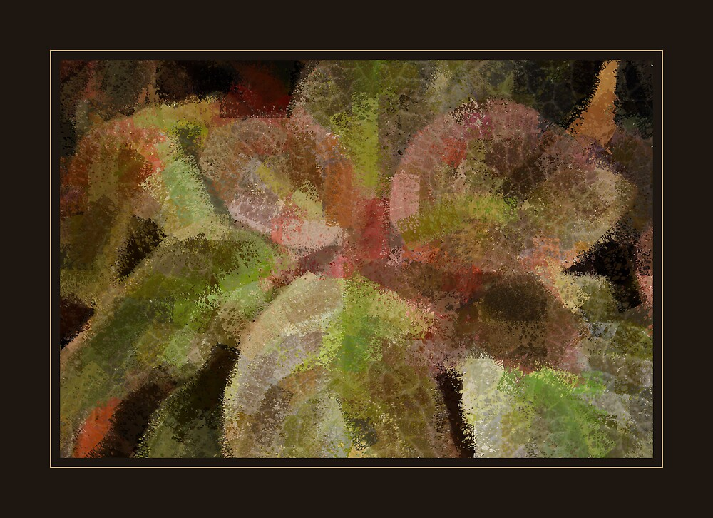 Leaves by mmrich