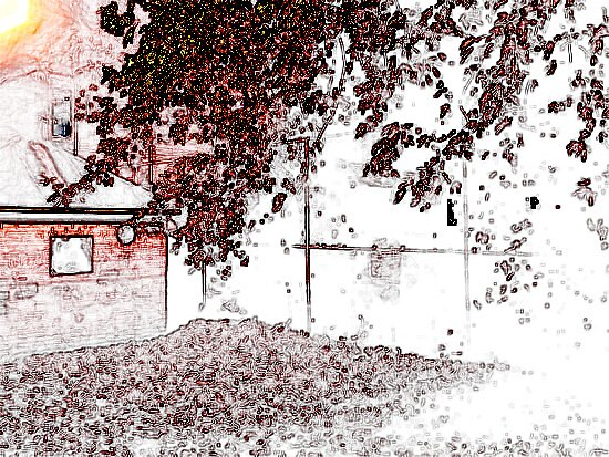 Sketchy? Leaves. by Tessi