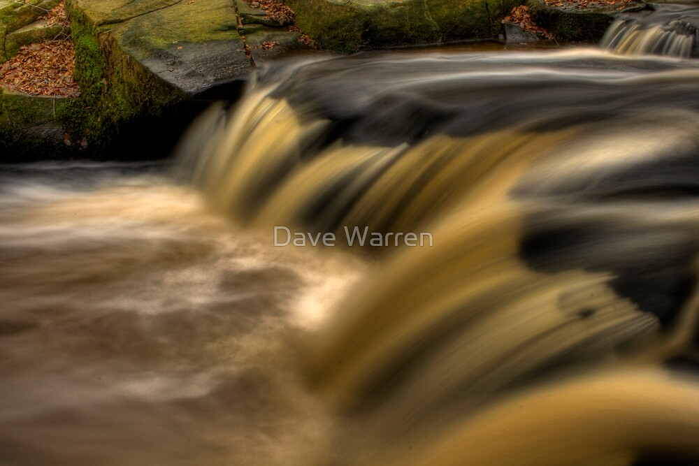Fast Flow by Dave Warren