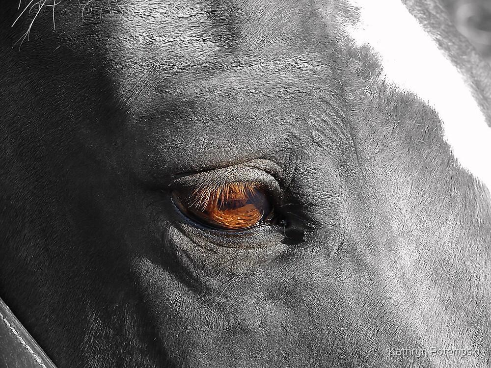 The Eye's Have It by Kathryn Potempski
