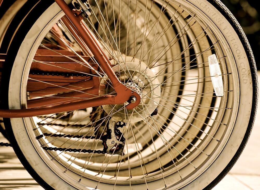 Wheels in Motion by Robin Robb