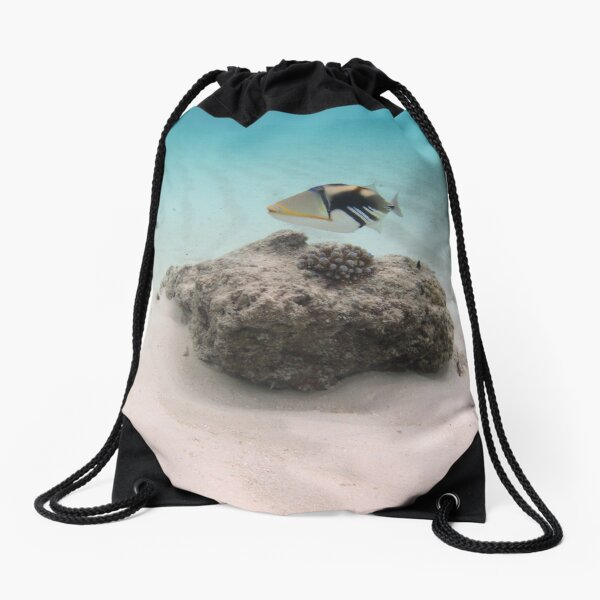 Hip Hop Drawstring Backpack Feminist Fish Riding A Bicycle with Quote Art Design Print Drawstring Backpack Rucksack Shoulder Bags Gym Bag