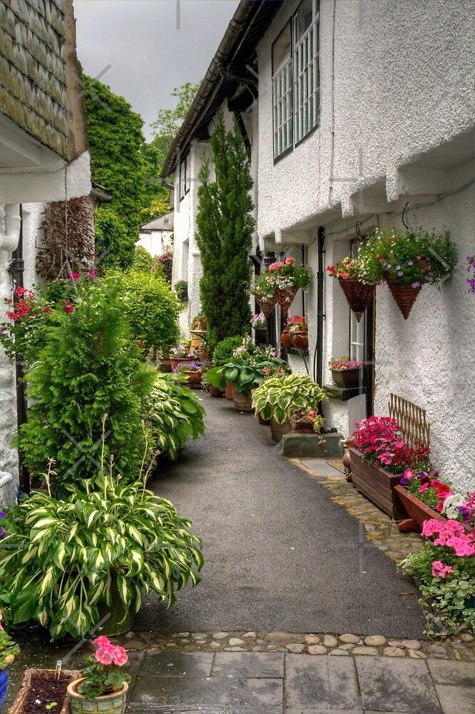 Hawkshead Alley by Tom Gomez