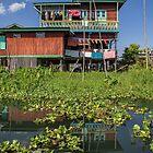 Myanmar. Inle Lake. House. by vadim19